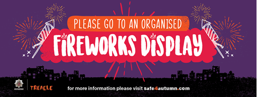 Please go to an organised fireworks display